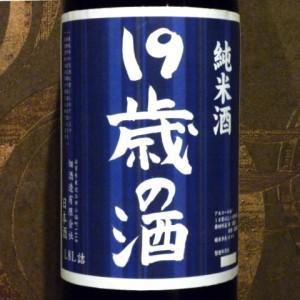 19歳の酒H27
